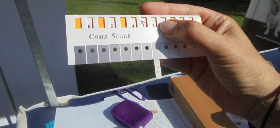 De stippen kun je tegen een schaal houden waarmee je de verkleuring kunt vergelijken. Het vakje met de C geeft de controle stip weer. Alles wat donkerder is, is goed. Zijn de stippen lichter dan is de enting niet meer voldoende werkzaam.